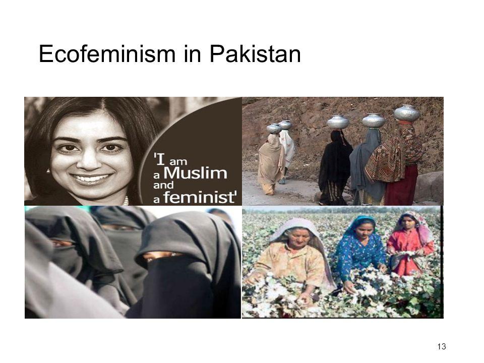Ecofeminism in Pakistan