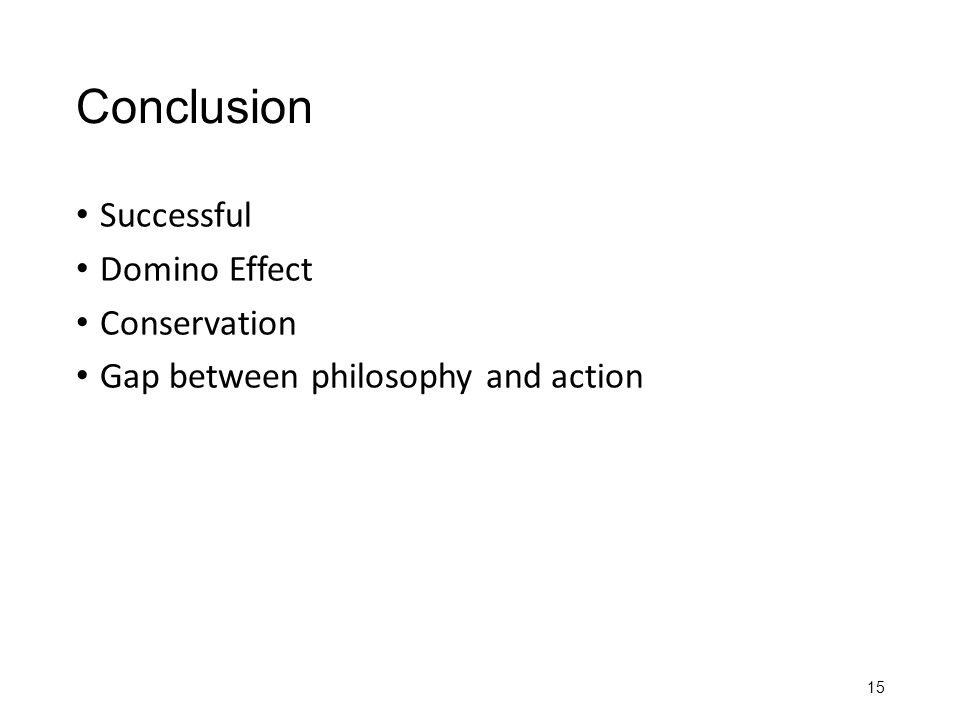 Conclusion Successful Domino Effect Conservation