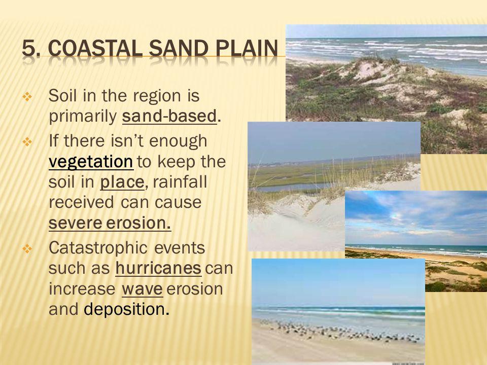 5. Coastal Sand Plain Soil in the region is primarily sand-based.