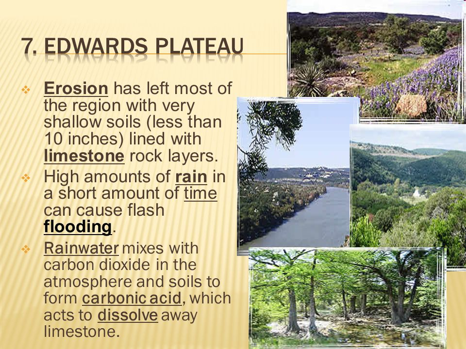 7. Edwards Plateau Erosion has left most of the region with very shallow soils (less than 10 inches) lined with limestone rock layers.