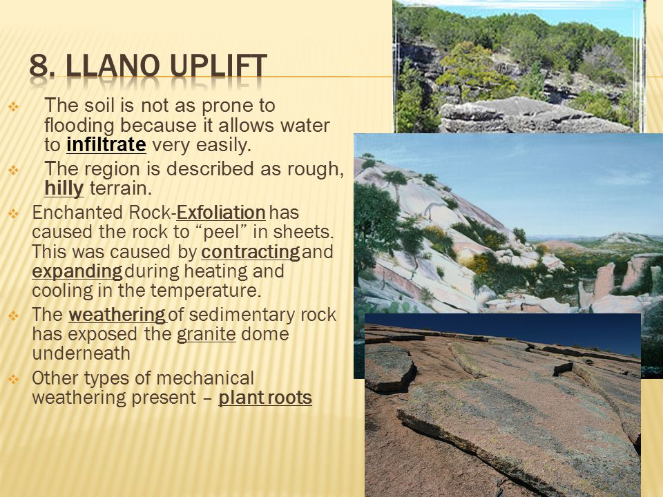 8. Llano Uplift The soil is not as prone to flooding because it allows water to infiltrate very easily.