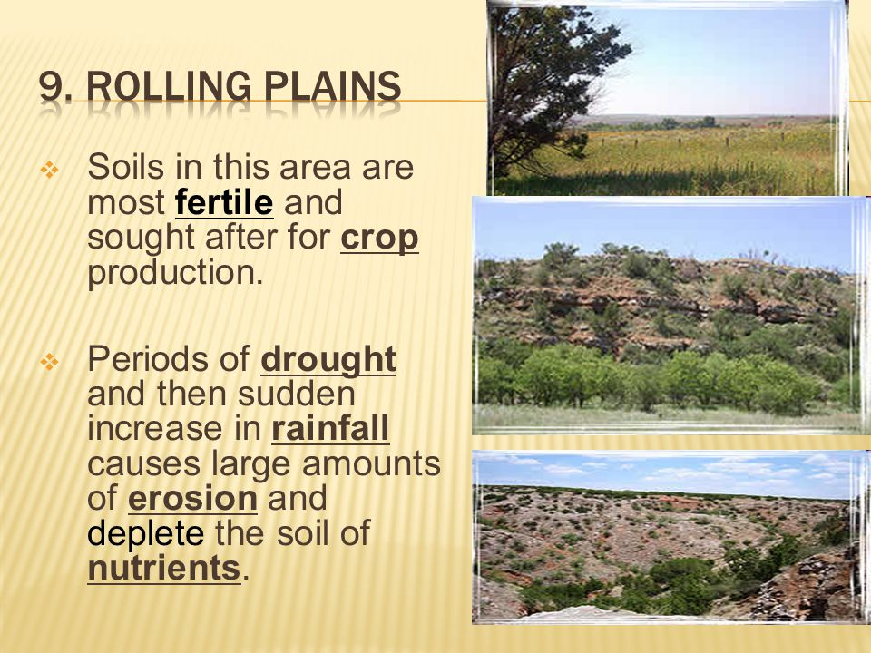 9. Rolling Plains Soils in this area are most fertile and sought after for crop production.