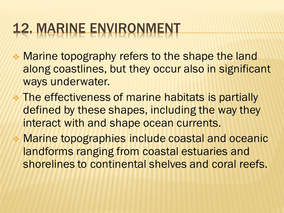 12. Marine environment Marine topography refers to the shape the land along coastlines, but they occur also in significant ways underwater.