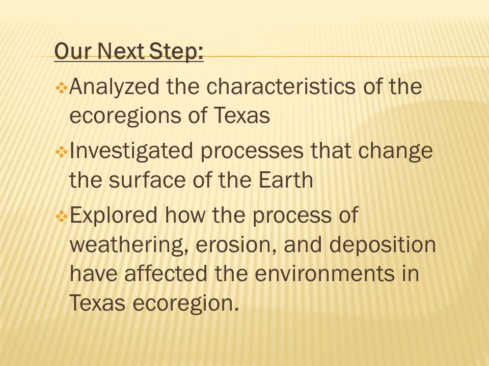 Our Next Step: Analyzed the characteristics of the ecoregions of Texas. Investigated processes that change the surface of the Earth.