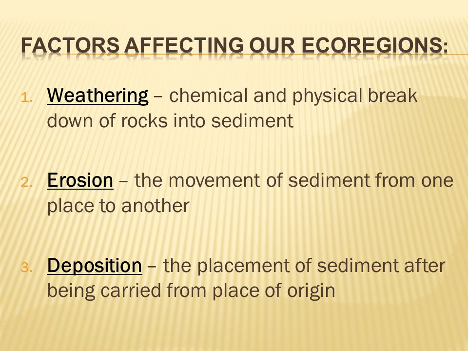 Factors Affecting Our Ecoregions: