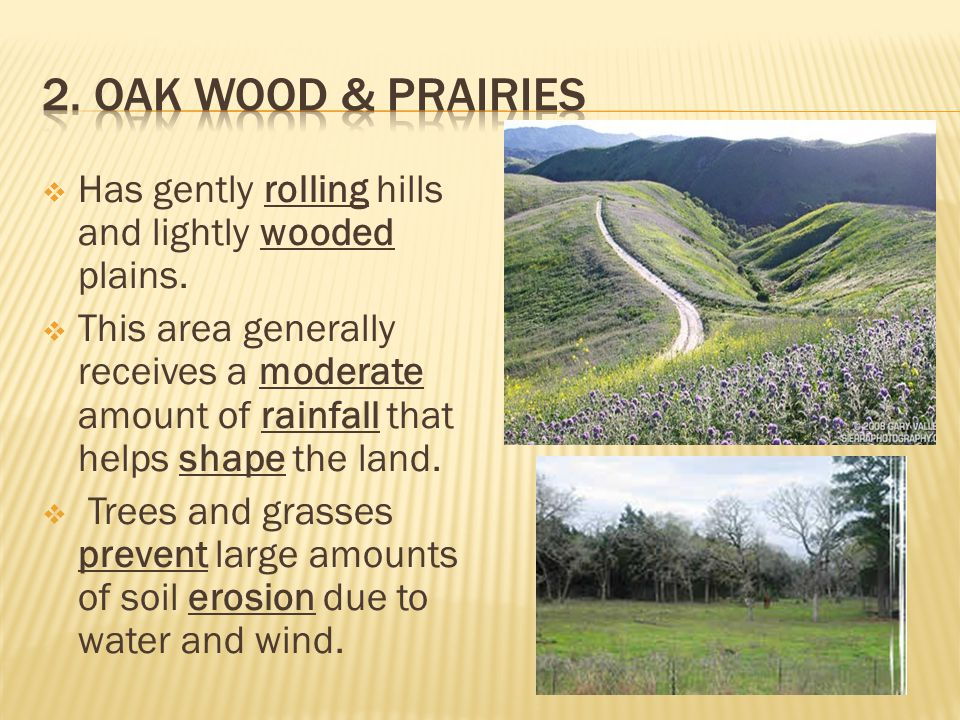 2. Oak Wood & Prairies Has gently rolling hills and lightly wooded plains.
