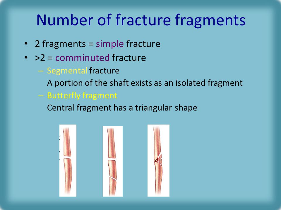 Number of fracture fragments