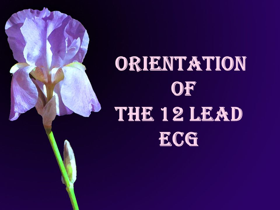 Orientation of the 12 Lead ECG