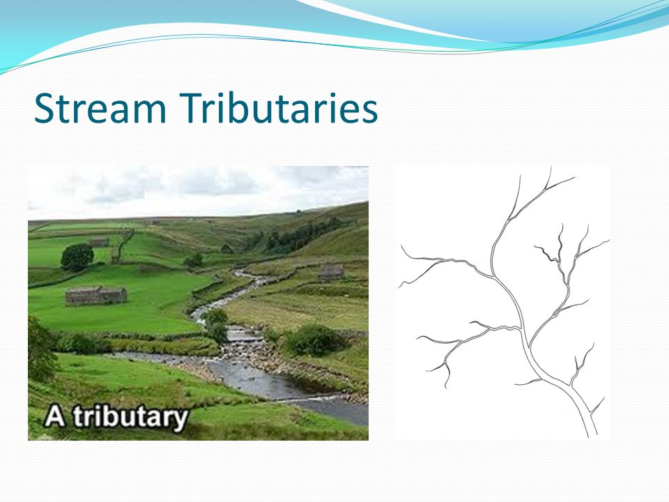Stream Tributaries