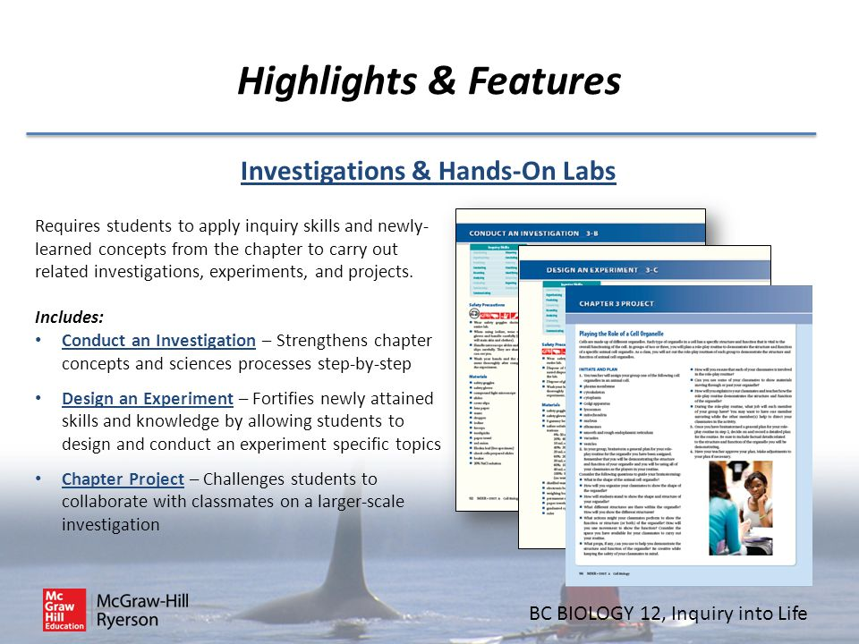 Investigations & Hands-On Labs