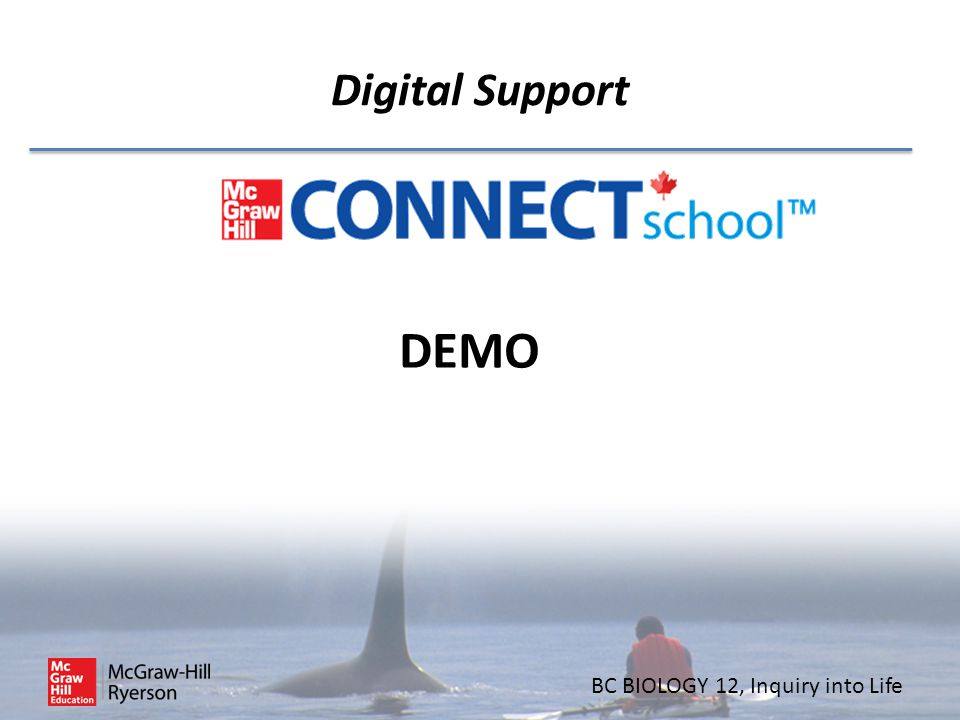 Digital Support DEMO