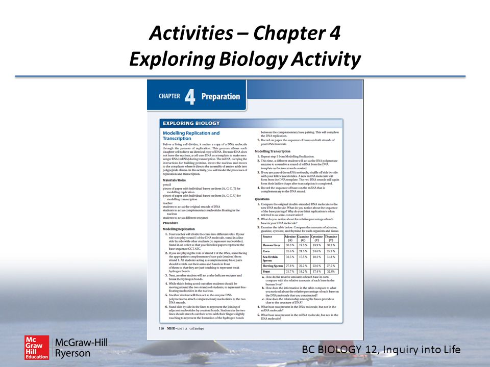 Activities – Chapter 4 Exploring Biology Activity