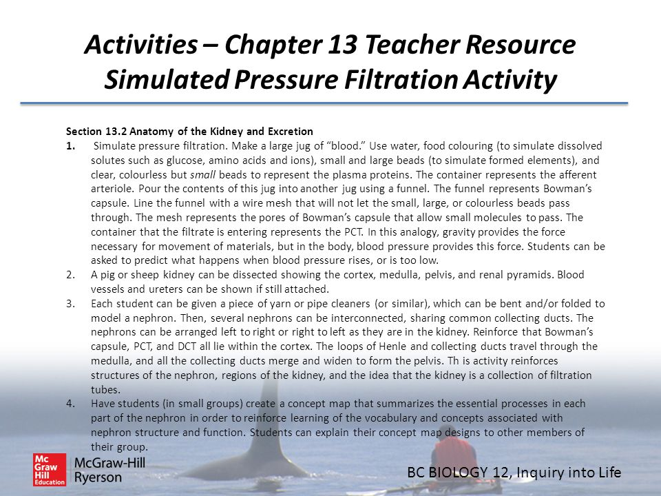Activities – Chapter 13 Teacher Resource Simulated Pressure Filtration Activity