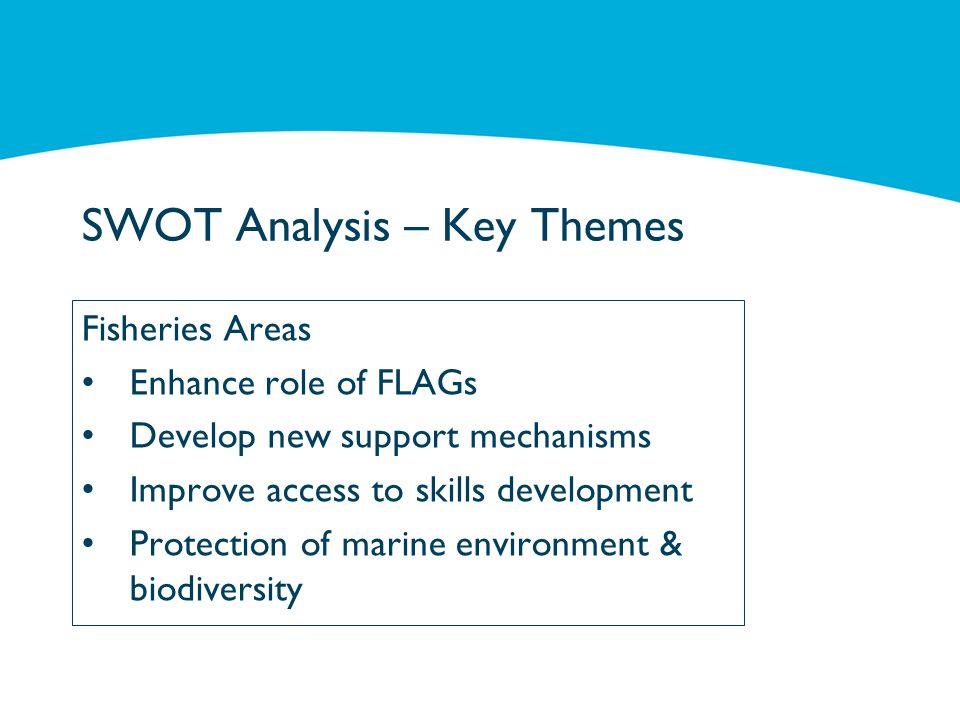 SWOT Analysis – Key Themes