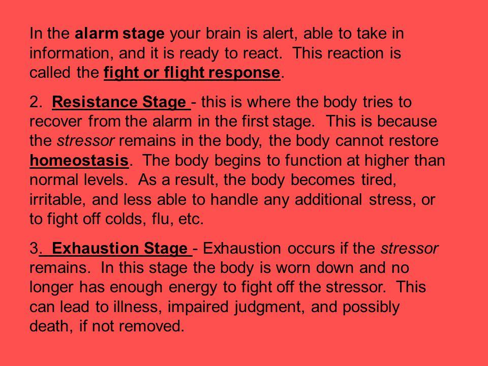 In the alarm stage your brain is alert, able to take in information, and it is ready to react. This reaction is called the fight or flight response.