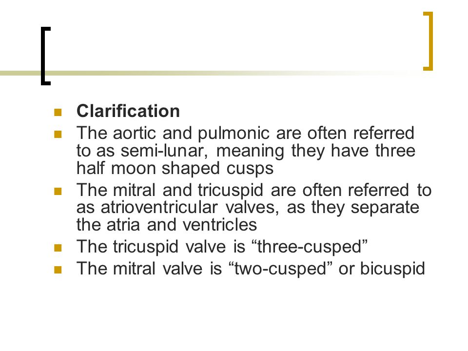 Clarification The aortic and pulmonic are often referred to as semi-lunar, meaning they have three half moon shaped cusps.