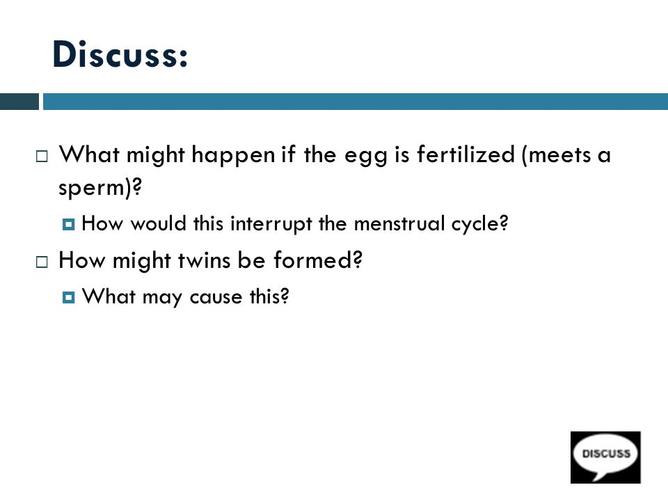 Discuss: What might happen if the egg is fertilized (meets a sperm)