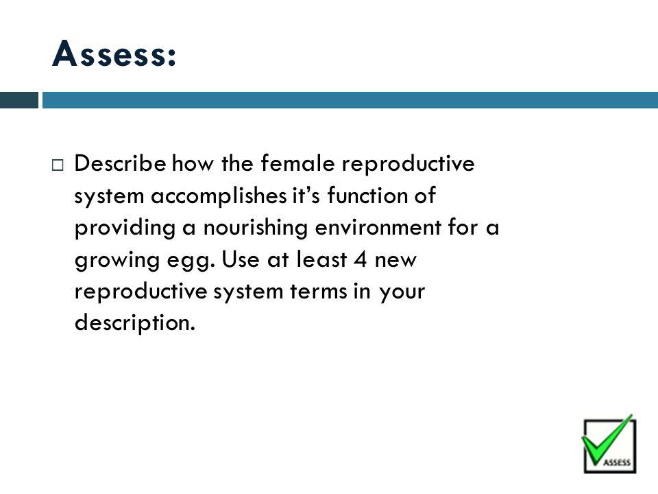 Assess: