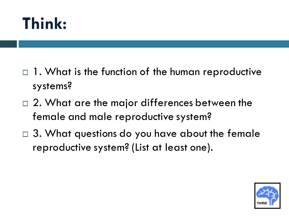Think: 1. What is the function of the human reproductive systems