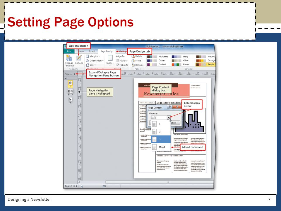 Setting Page Options Designing a Newsletter