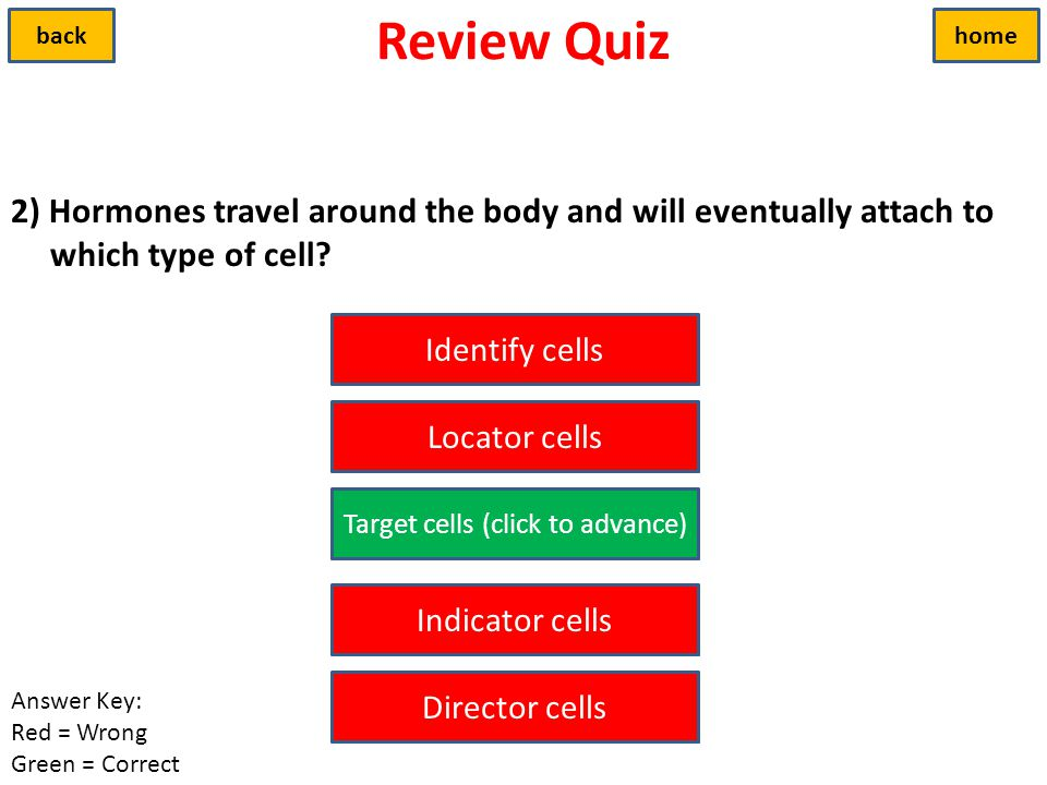 Target cells (click to advance)