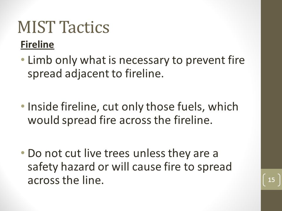 MIST Tactics Fireline. Limb only what is necessary to prevent fire spread adjacent to fireline.