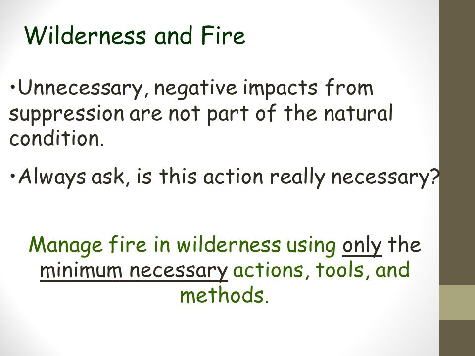 Wilderness and Fire Unnecessary, negative impacts from suppression are not part of the natural condition.