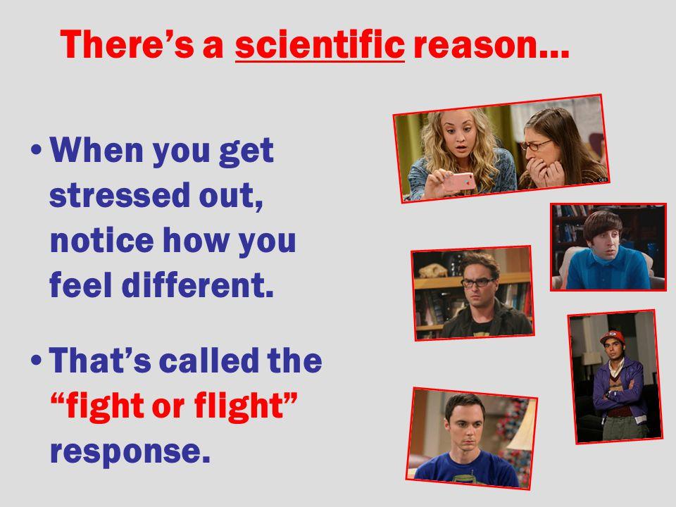 There's a scientific reason…