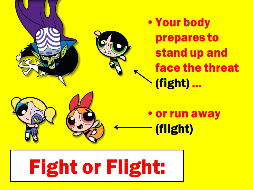Your body prepares to stand up and face the threat (fight) …