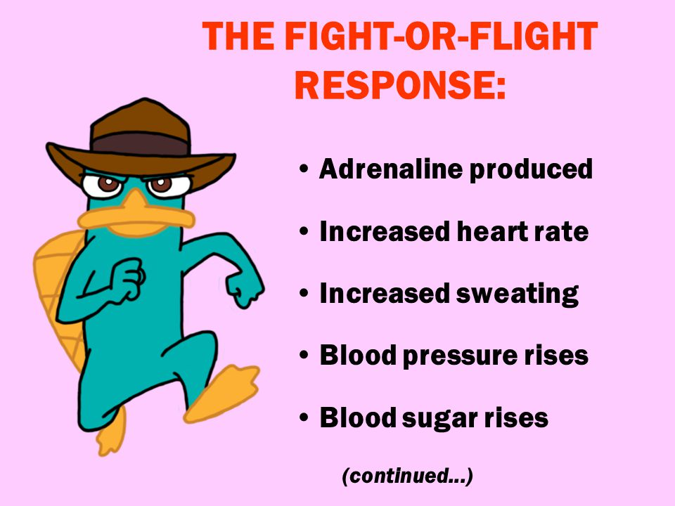 THE FIGHT-OR-FLIGHT RESPONSE: