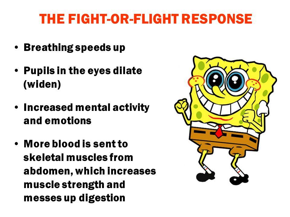 THE FIGHT-OR-FLIGHT RESPONSE