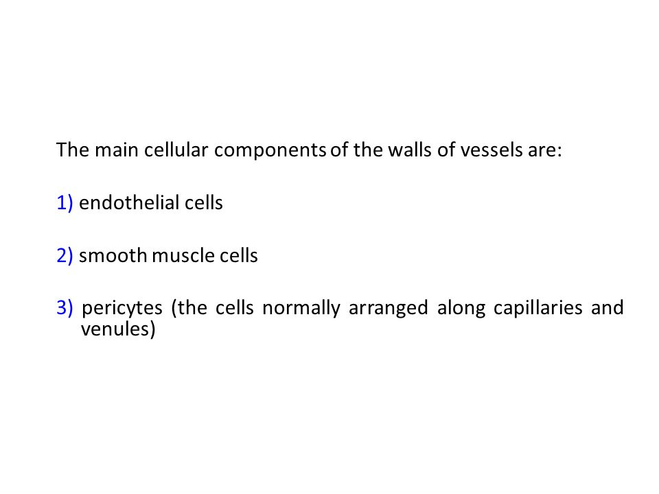 The main cellular components of the walls of vessels are: