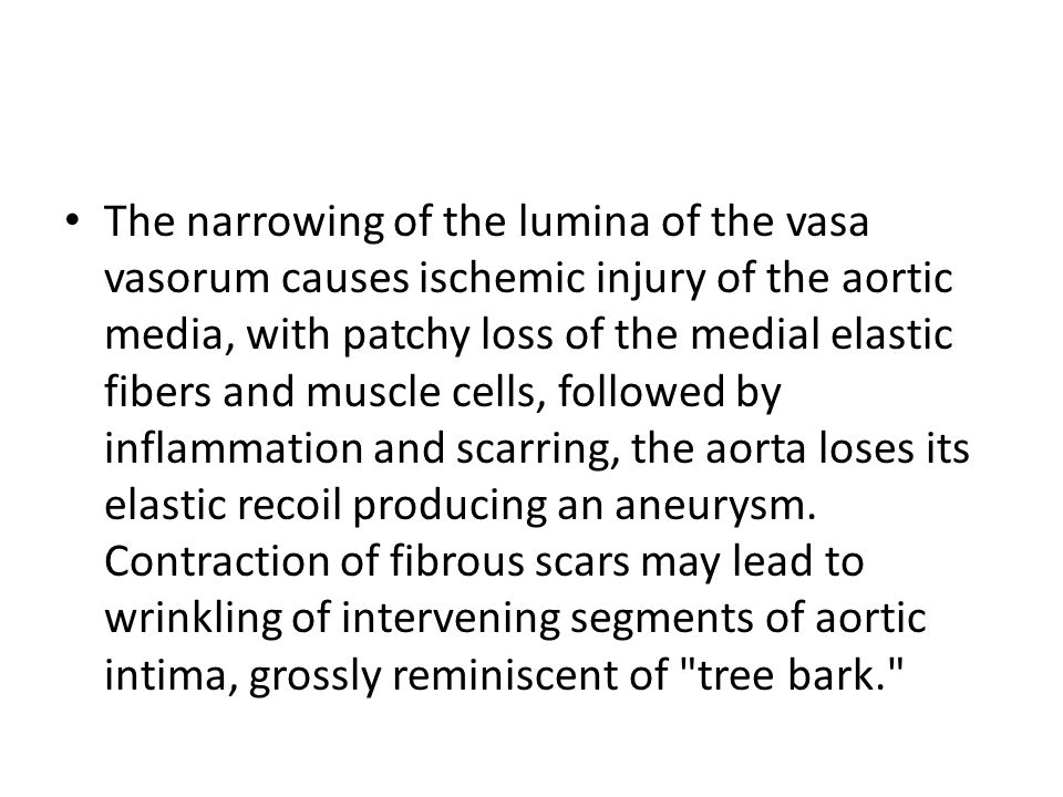 The narrowing of the lumina of the vasa vasorum causes ischemic injury of the aortic media, with patchy loss of the medial elastic fibers and muscle cells, followed by inflammation and scarring, the aorta loses its elastic recoil producing an aneurysm.