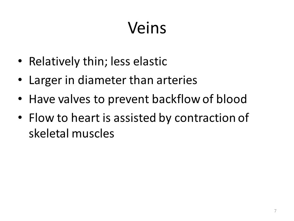 Veins Relatively thin; less elastic Larger in diameter than arteries