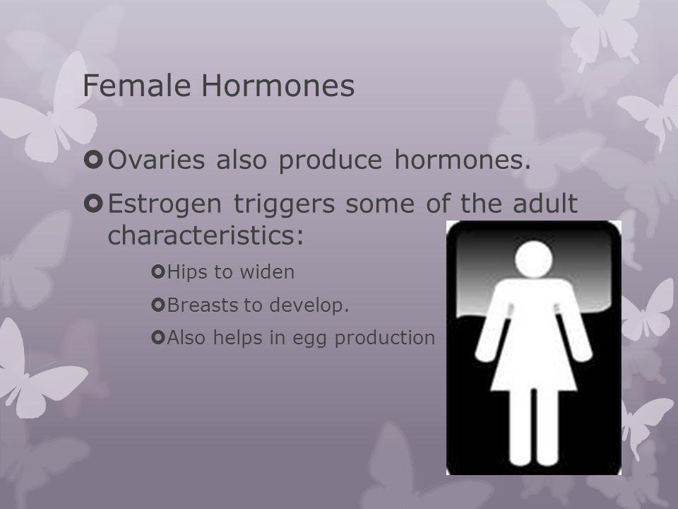 Female Hormones Ovaries also produce hormones.
