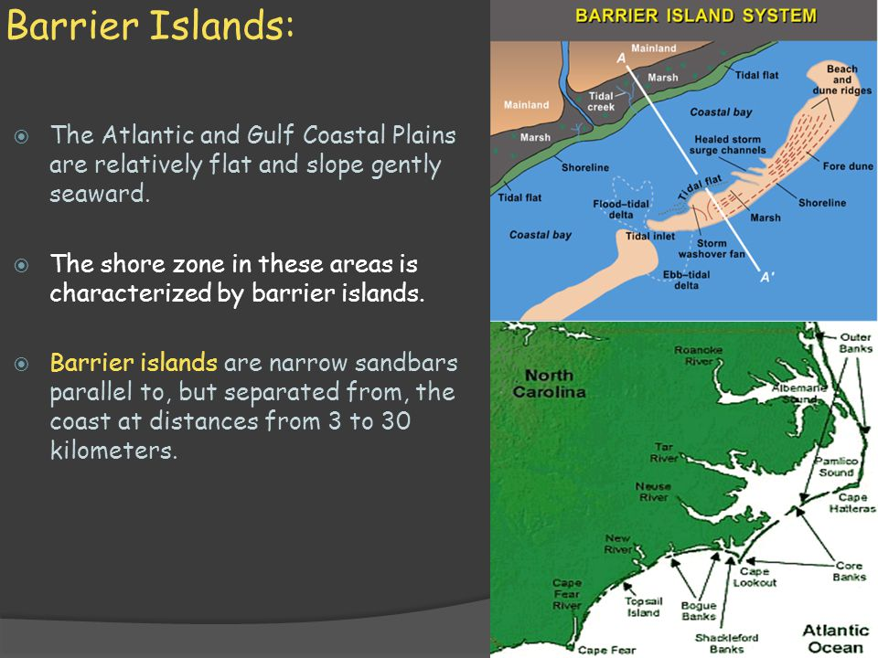 Barrier Islands: The Atlantic and Gulf Coastal Plains are relatively flat and slope gently seaward.