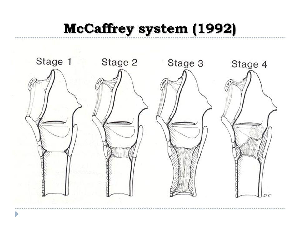McCaffrey system (1992)