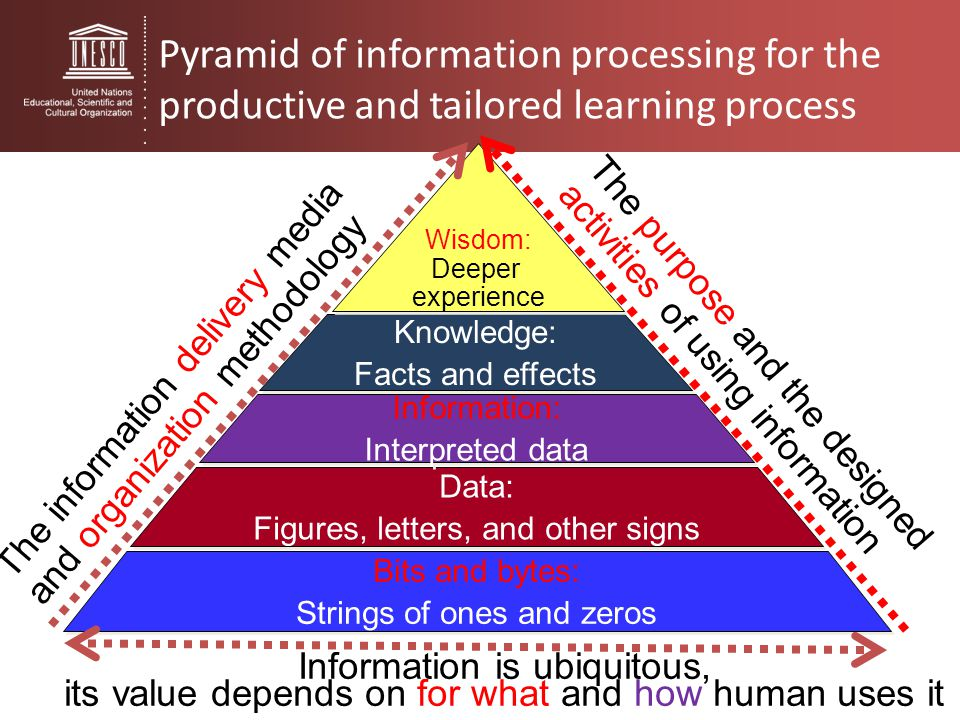Pyramid of information processing for the productive and tailored learning process