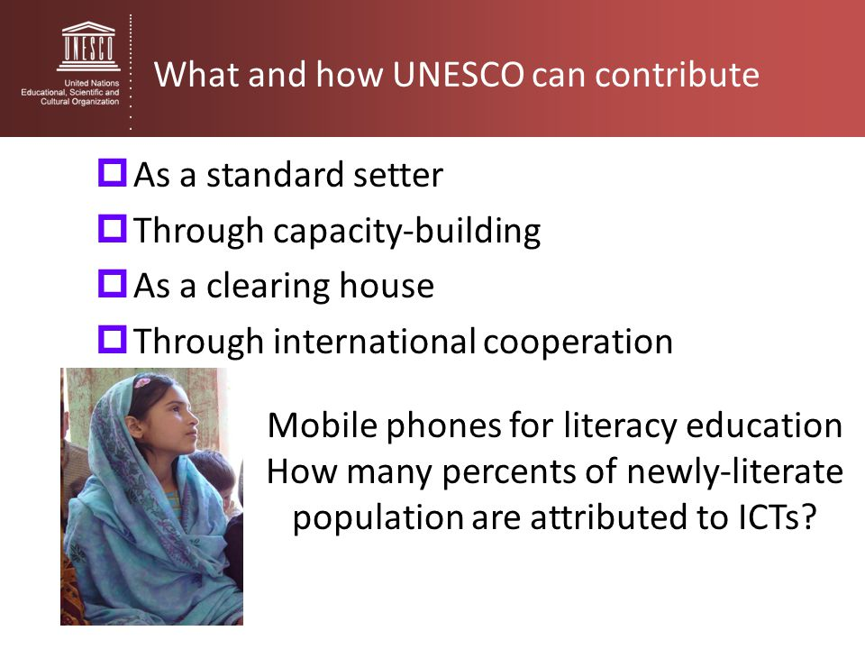 What and how UNESCO can contribute