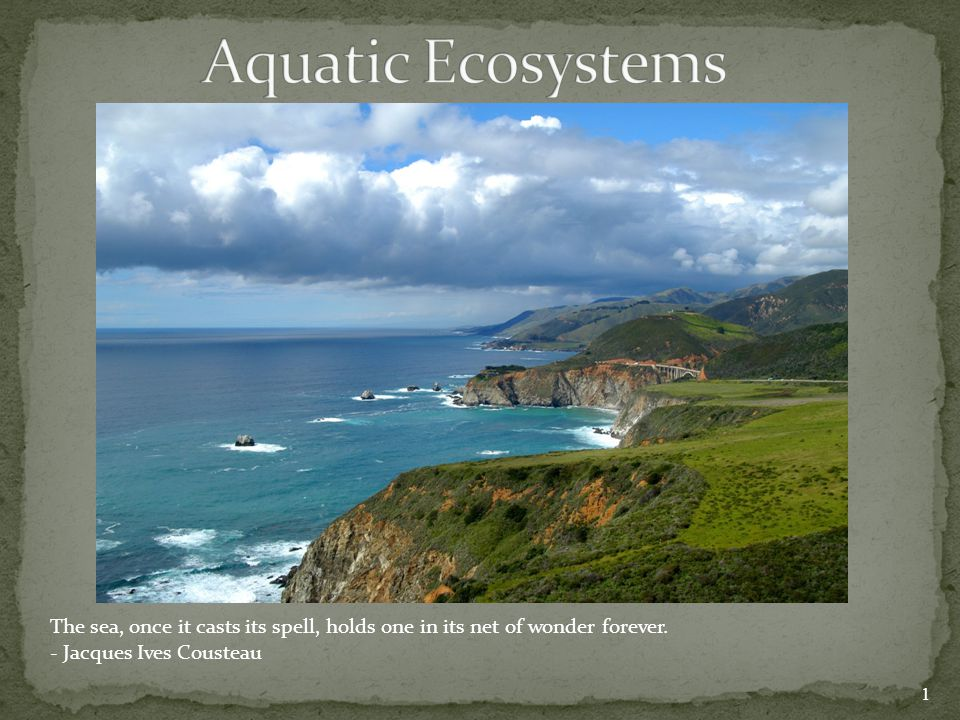 Aquatic Ecosystems The sea, once it casts its spell, holds one in its net of wonder forever.