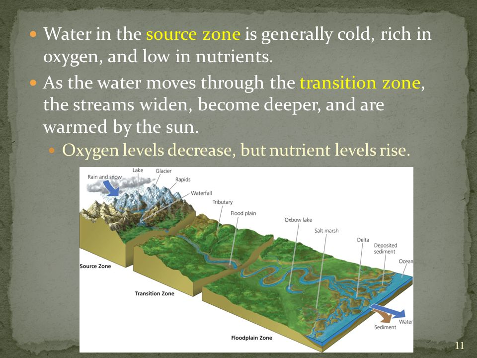 Water in the source zone is generally cold, rich in oxygen, and low in nutrients.
