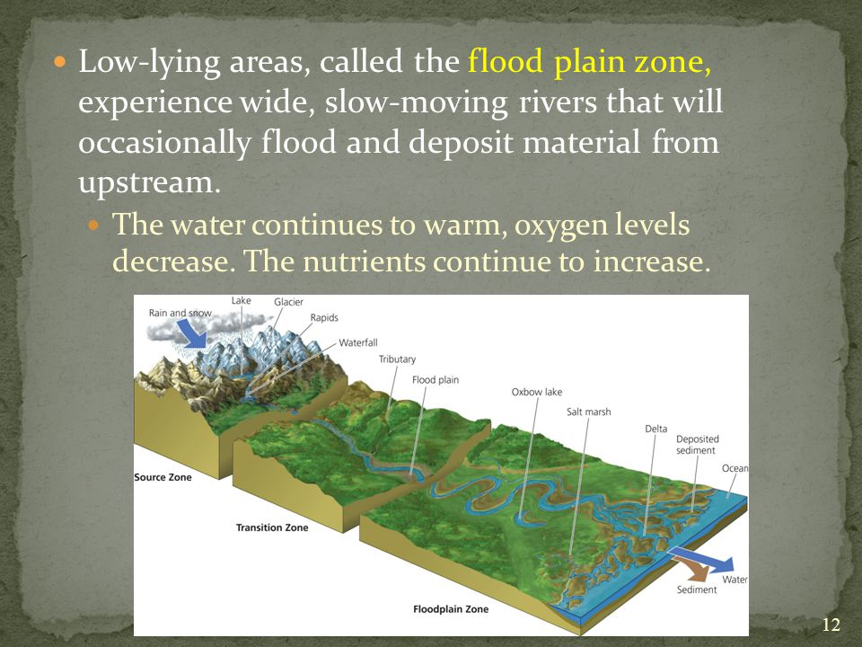 Low-lying areas, called the flood plain zone, experience wide, slow-moving rivers that will occasionally flood and deposit material from upstream.