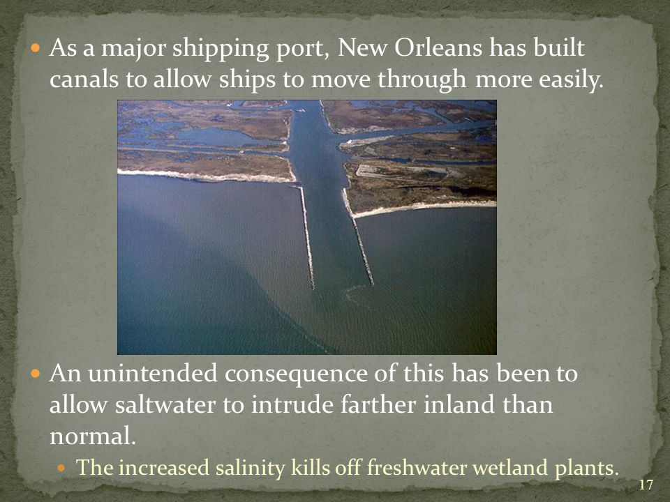 As a major shipping port, New Orleans has built canals to allow ships to move through more easily.