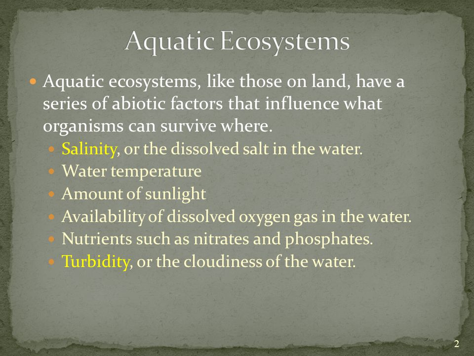 Aquatic Ecosystems Aquatic ecosystems, like those on land, have a series of abiotic factors that influence what organisms can survive where.