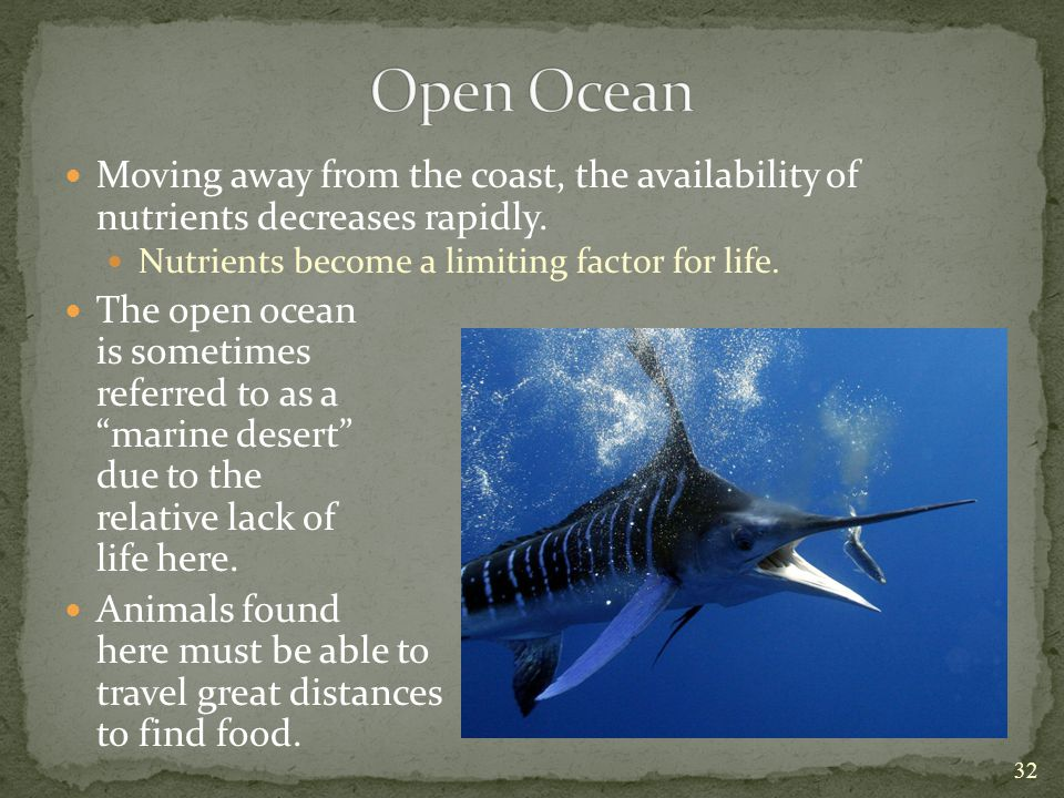 Open Ocean Moving away from the coast, the availability of nutrients decreases rapidly. Nutrients become a limiting factor for life.
