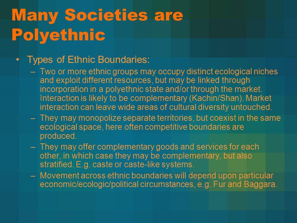 Many Societies are Polyethnic