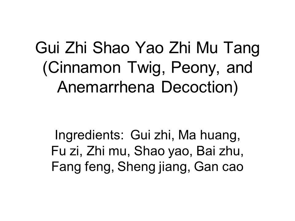 Gui Zhi Shao Yao Zhi Mu Tang (Cinnamon Twig, Peony, and Anemarrhena Decoction)