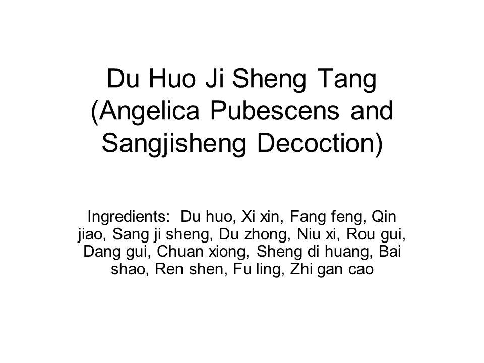Du Huo Ji Sheng Tang (Angelica Pubescens and Sangjisheng Decoction)