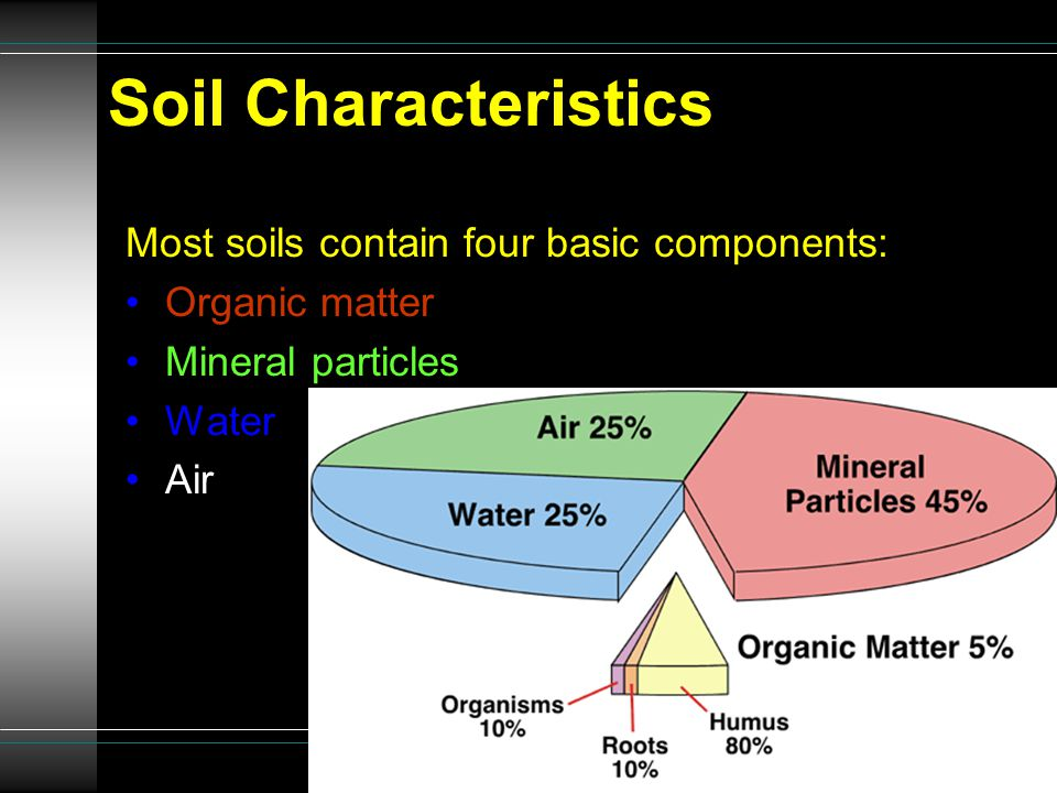 Characteristics texture soil profile soil types threats to for Four main components of soil