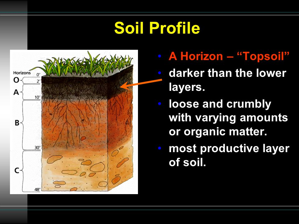 Characteristics texture soil profile soil types threats to for Soil profile video